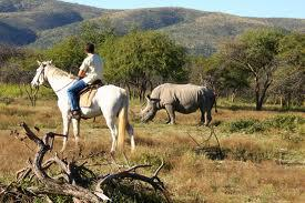 Mabalingwe Game Reserve, Limpopo