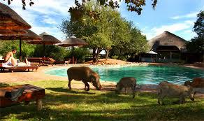 Mabula Game Reserve, Limpopo