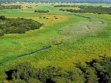 Nylsvley Nature Reserve, Limpopo